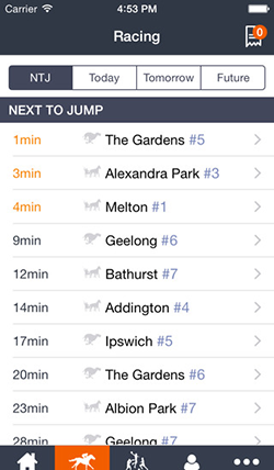 Palmerbet Mobile App Preview